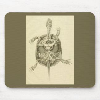 Vintage Biological Turtle Anatomy Mouse Pad