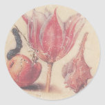 Vintage biology sticker
