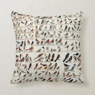 Vintage Bird Chart Throw Pillow