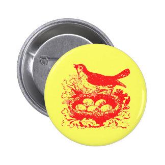 Vintage Bird Eggs & Nest Button