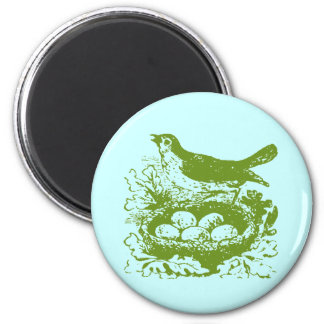 Vintage Bird Eggs & Nest Fridge Magnet