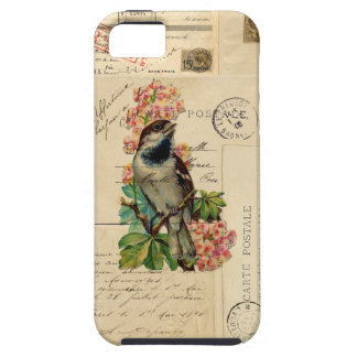 Vintage Bird Flowers French Postcards Case