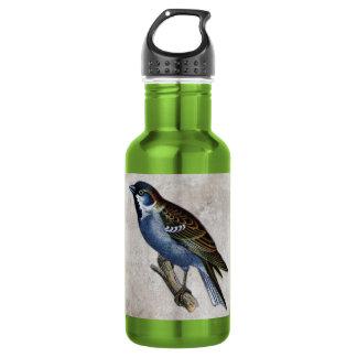Vintage Bird Illustration Water Bottle