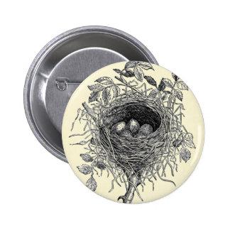 Vintage Bird Nest Illustration Buttons