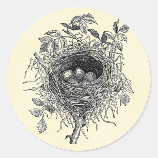 Vintage Bird Nest Illustration Classic Round Sticker