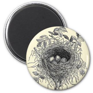 Vintage Bird Nest Illustration Magnet