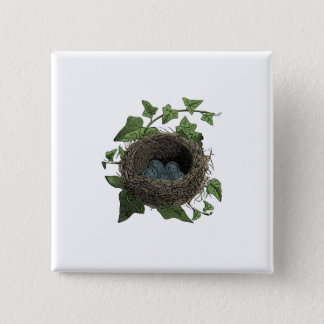 Vintage Bird Nest illustration Pinback Button