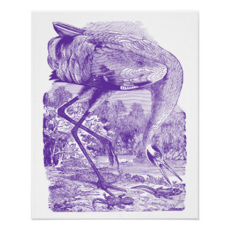Vintage Bird Picture | Purple | Whooping Crane Poster