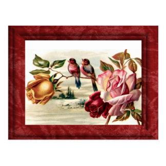 Vintage Bird Roses Postcard