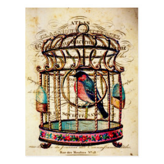 Vintage Birdcage French Paper Art Postcard