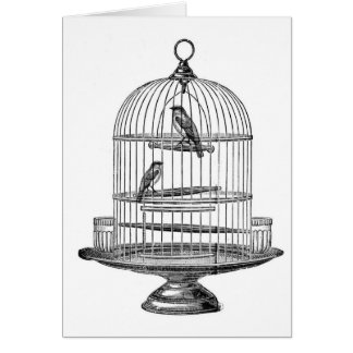 Vintage Birdcage with Birds...notecard Stationery Note Card