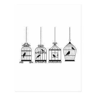 Vintage birdcages with cute birds postcard