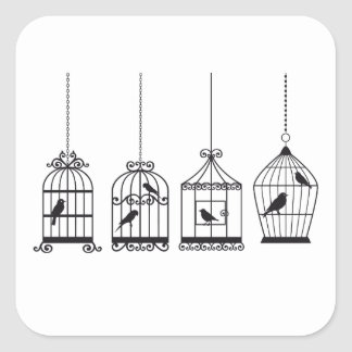 Vintage birdcages with cute birds square sticker