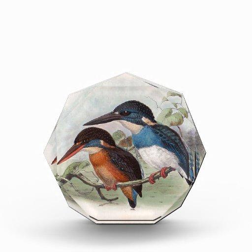 Vintage Birds Acrylic Award