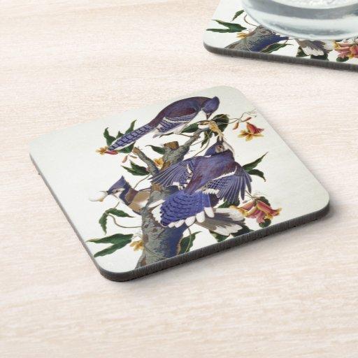 Vintage Birds Beverage Coasters