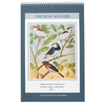 Vintage Birds - Finches and Weavers 2021 Calendar