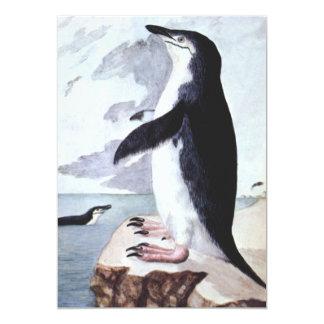Vintage Birds from Antarctica, Chinstrap Penguin Card