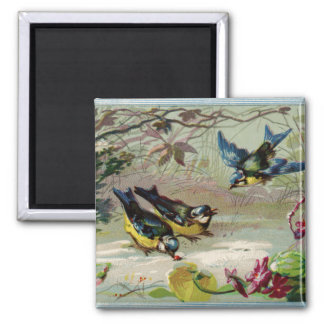Vintage Birds in the Snow Magnet