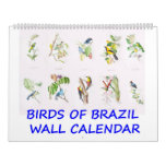 Vintage Birds of Brazil Wall Calendar