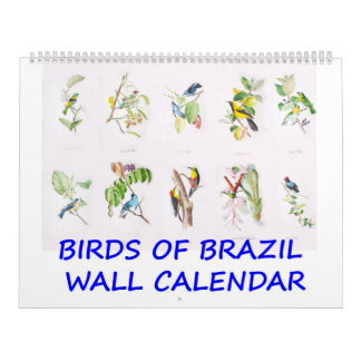 Vintage Birds of Brazil Wall Calendar