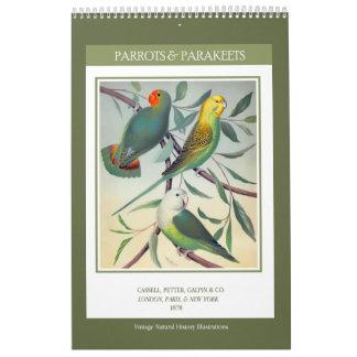 Vintage Birds - Parrots and Parakeets 2018 Calendar