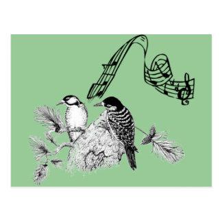 Vintage Birds Postcard