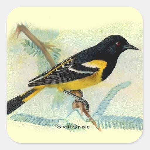 Vintage Birds Square Sticker