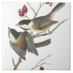 Vintage Birds Tile