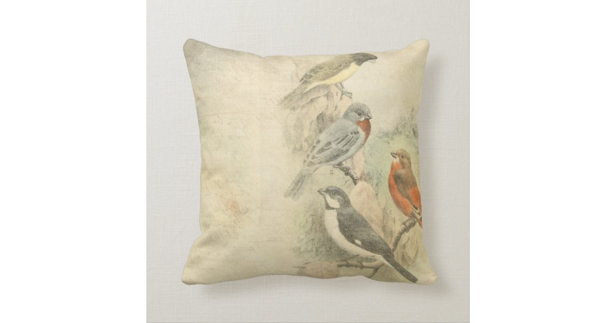 Throw Pillows Bird Design : Vintage Birds Worn Design Pillow Zazzle