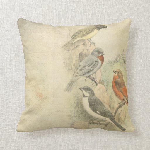 Throw Pillows Bird Design : Vintage Birds Worn Design Throw Pillow Zazzle