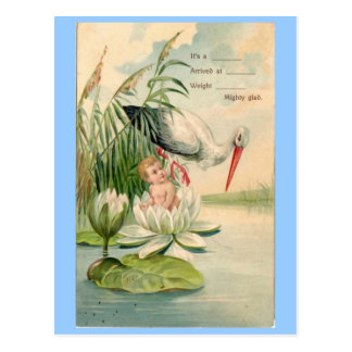 Vintage Birth Announcement-Stork, Lily Pad, Baby Postcard