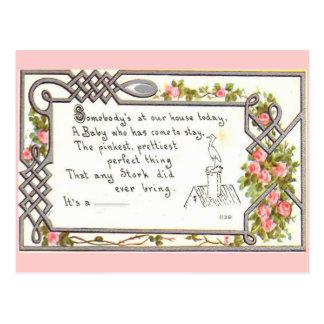 Vintage Birth Announcement-Stork on chimney Postcard