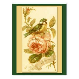 Vintage Birthday Card With Bird And Roses Post Cards