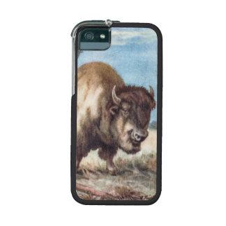 Vintage Bison Illustration - Nature Animal iPhone 5/5S Cases