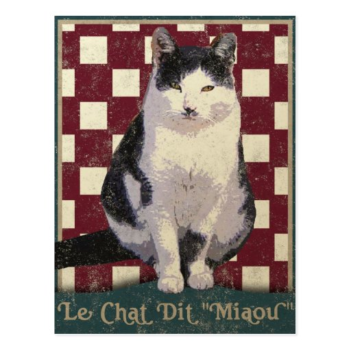 Vintage Bistro Cat Post Card
