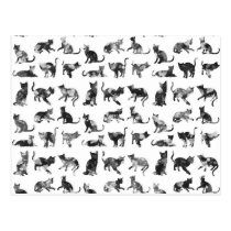 Vintage black and white floral cats pattern postcard