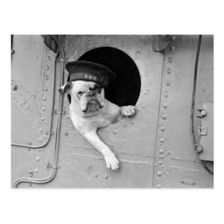 Vintage Black and White Military Bulldog Nautical Postcard