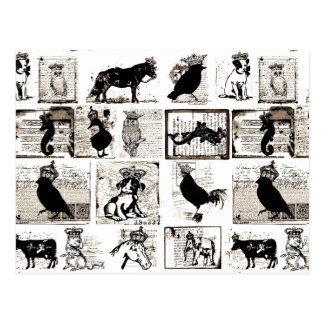 Vintage Black And White Royal Animals Postcard