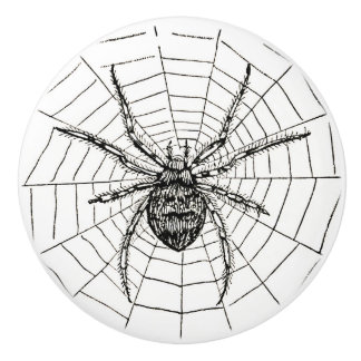 Vintage Black and White Spider Illustration Ceramic Knob
