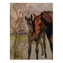 """Vintage Black Beauty horse """"My Mother and I"""" Postcard"""
