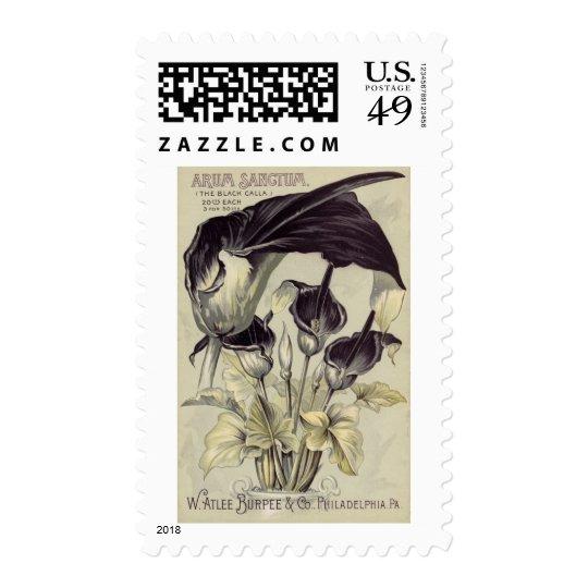 Vintage Black Calla Lilies Postage