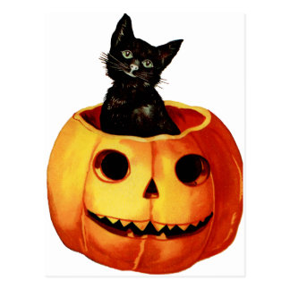 Vintage Black Cat and Pumpkin Postcard