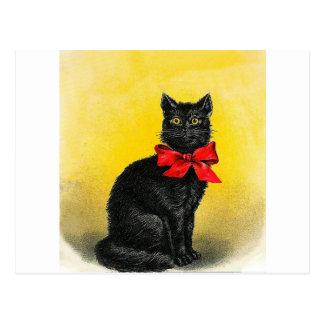 Vintage Black Cat Postcard