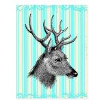 Vintage Black Deer Girly Teal White Stripes Post Card