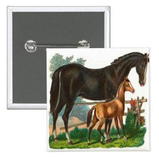 Vintage, Black Horse & Little Brown Horse Pinback Button