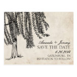 Vintage Black Weeping Willow Save The Date Post Card