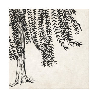 Vintage Black Weeping Willow Tree Canvas Print