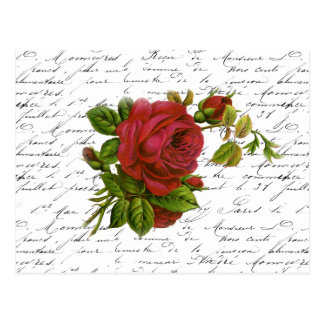 Vintage Black White French Typography Red Rose Postcard