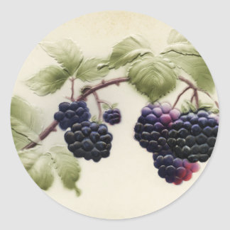 Vintage Blackberries and Leaves Postcard Art Classic Round Sticker