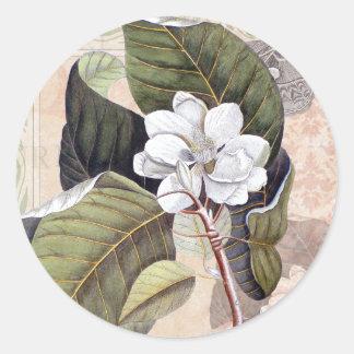Vintage blanco del flor de la magnolia botánico pegatinas redondas